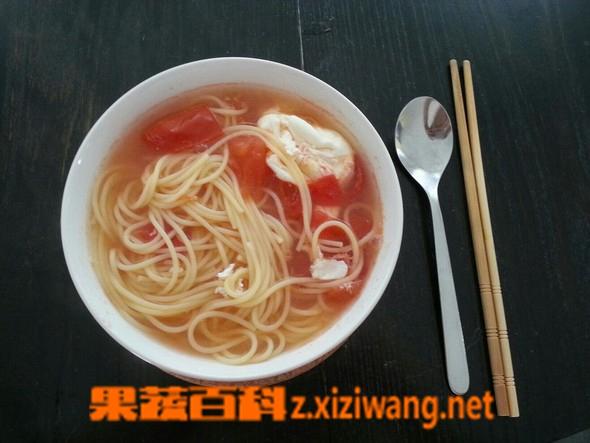 果蔬百科番茄鸡蛋汤面